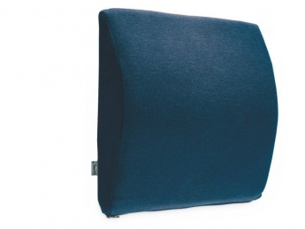 Transit Lumbar Support